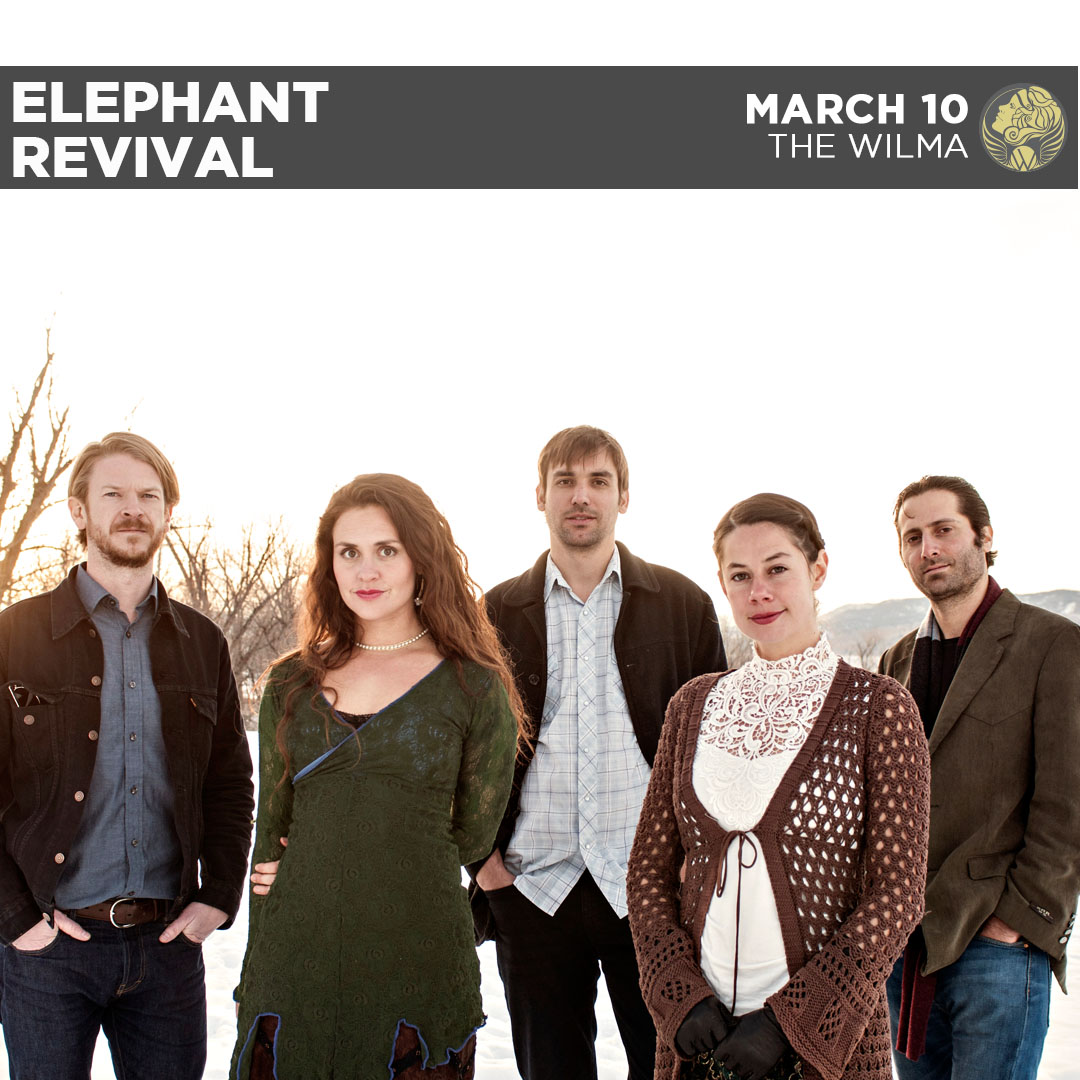 instagram-elephant-revival