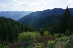 Trail Well Traveled – 11/18