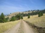 Trail Well Traveled – 3/31