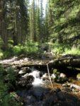 Trail Well Traveled – 10/19